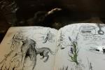 sketchbookphotos12